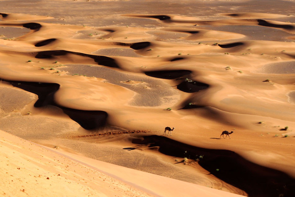 Merzouga-dunes